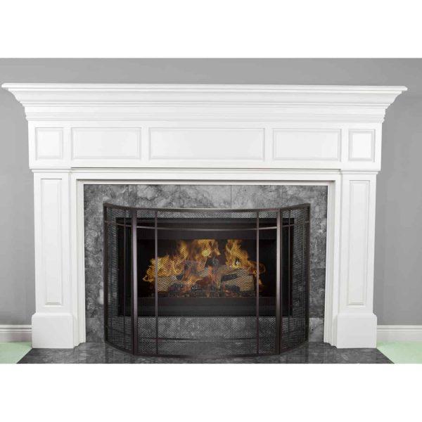 Asteria Fireplace Screen 1