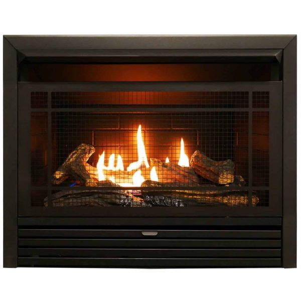 Charlton Home Hardwick Dual Fuel Fireplace Insert 1