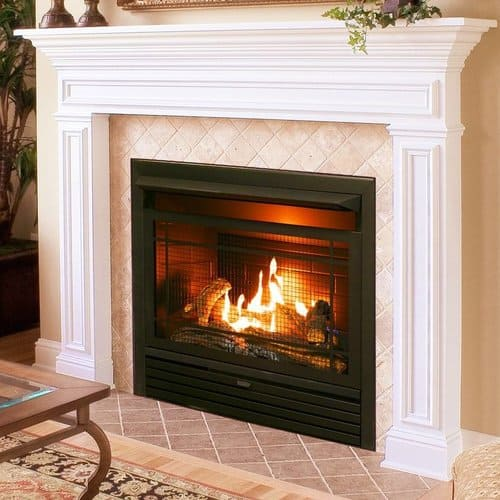 Charlton Home Hardwick Dual Fuel Fireplace Insert