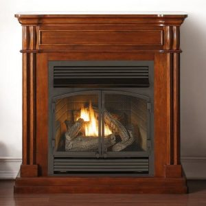 Duluth Forge Propane/Natural Gas Fireplace