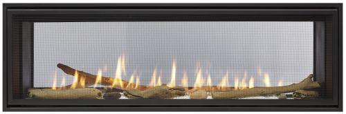 Echelon II 48'' Direct Vent See-Thru Gas Fireplace - Natural Gas