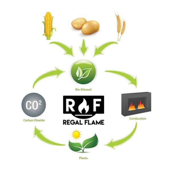 Elite Flame Bio Ethanol Fireplace Fuel (Set of 12) 1