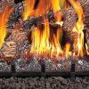 Fiberglow 24 Inch Vented Log Burner Set Insert for Natural Gas Fireplaces 7