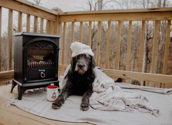 Hamilton Free Standing Electric Fireplace Stoveby e-Flame USA - Black 10