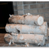 "Large Fireplace White Birch Logs (5 logs) 18"" long x 3-5"" diameter"