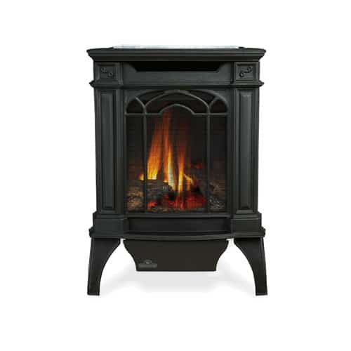 Napoleon GDS20SB Black 20000 BTU Free Standing Direct Vent Natural Gas Stove