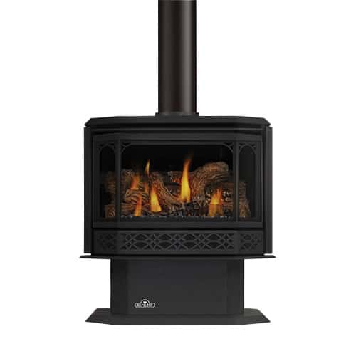Napoleon GDS50-1SB Black 44000 BTU Free Standing Direct Vent Natural Gas Stove