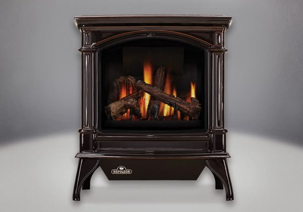 Napoleon GDS60-1NSB 35000 BTU Free Standing Direct Vent Natural Gas Stove