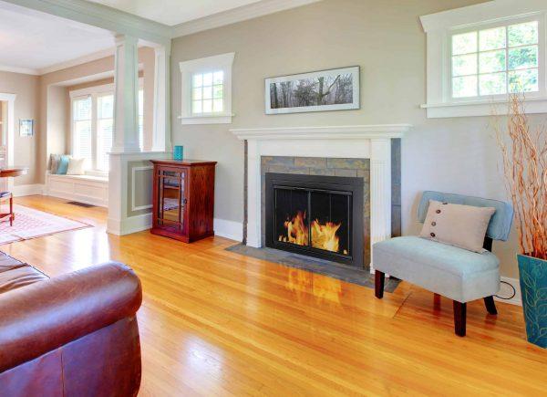 Pleasant Hearth Ascot Black Fireplace Glass Doors - Medium 1