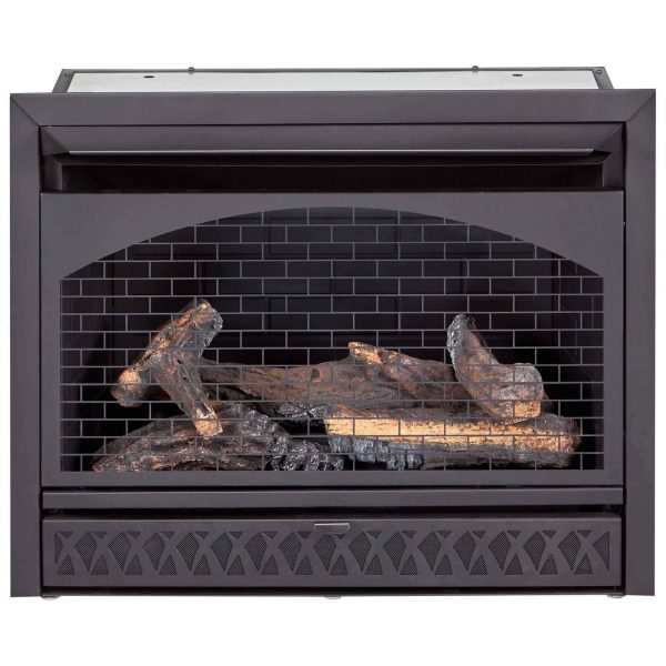 Procom Vent-Free Dual Fuel Fireplace Insert, Model FBNSD28T 2