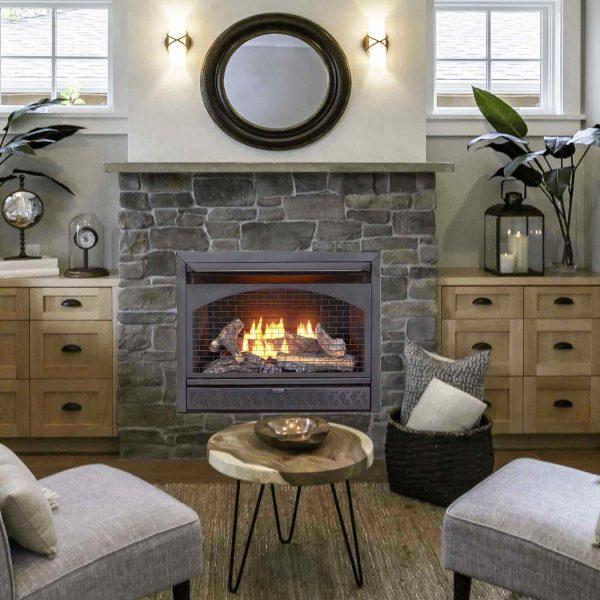 Procom Vent-Free Dual Fuel Fireplace Insert, Model FBNSD28T 4