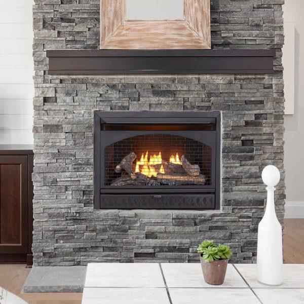 Procom Vent-Free Dual Fuel Fireplace Insert, Model FBNSD28T 5