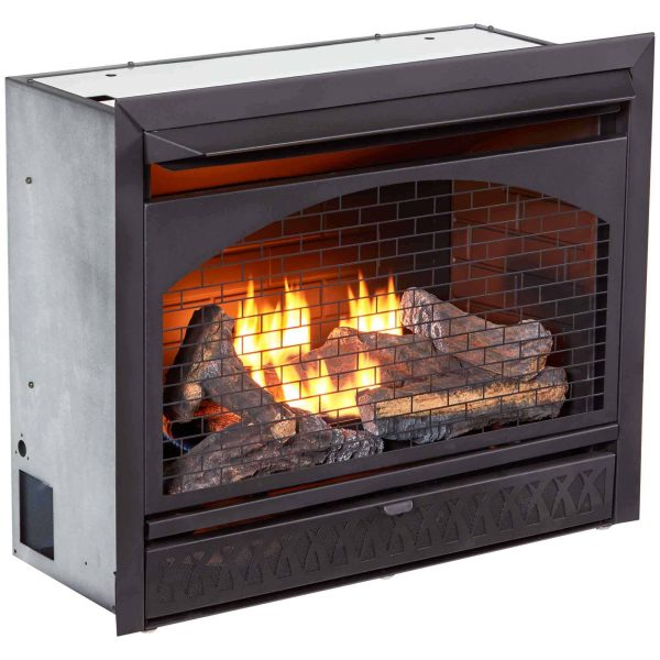 Procom Vent-Free Dual Fuel Fireplace Insert