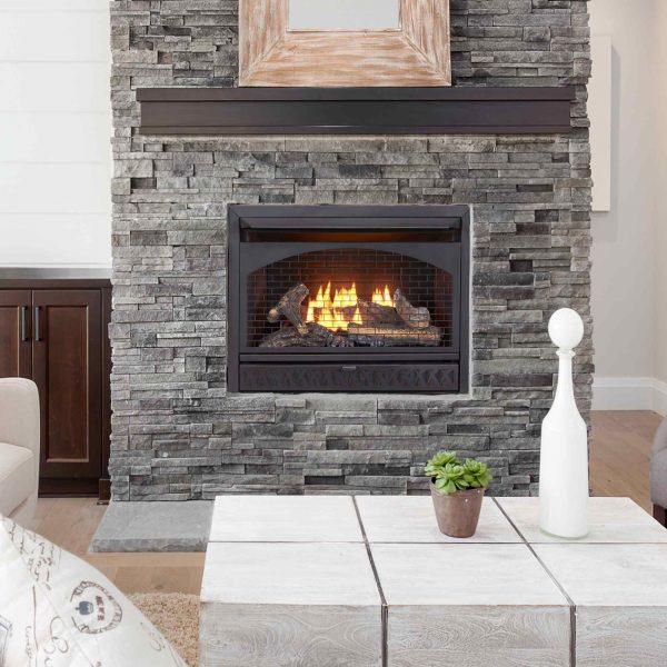 Procom Vent-Free Dual Fuel Fireplace Insert, Model FBNSD28T 6