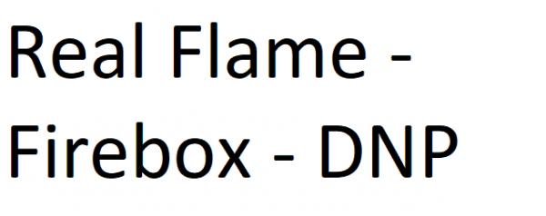 Real Flame Standard Electric Firebox