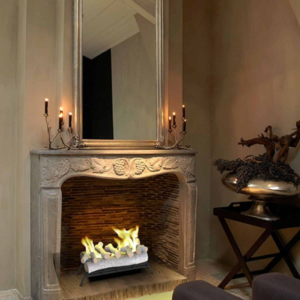 Regal Flame ECK20BRC24 24 in. Convert to Ethanol Fireplace Log Set with Burner Insert from Gel or Gas Logs, Birch - 24 x 10 x 15 in. 5