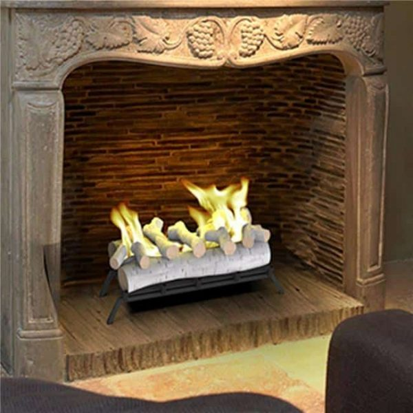 Regal Flame ECK20BRC24 24 in. Convert to Ethanol Fireplace Log Set with Burner Insert from Gel or Gas Logs