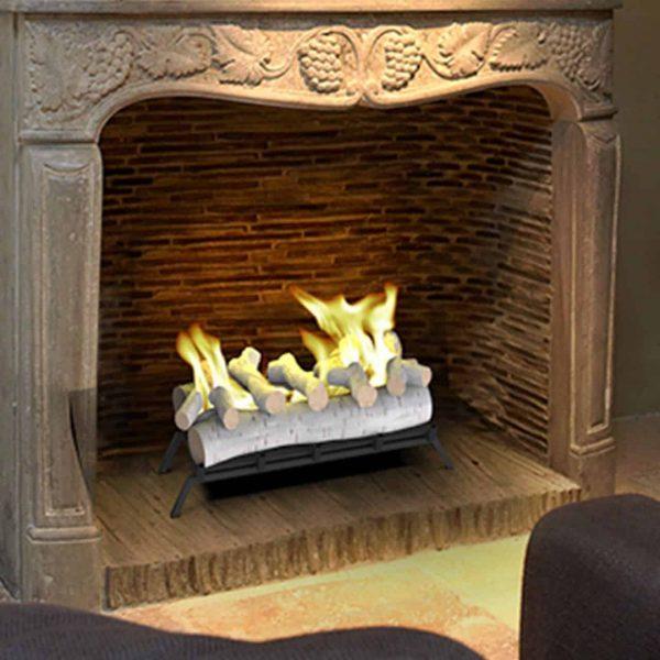 Regal Flame ECK20BRC24 24in Convert to Ethanol Fireplace Log Set - Birch 1