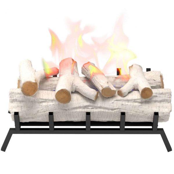 Regal Flame ECK20BRC24 24in Convert to Ethanol Fireplace Log Set - Birch