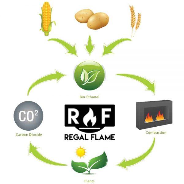 Regal Flame Premium Ventless Bio Ethanol Fireplace Fuel (Set of 12) 1