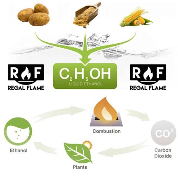 Regal Flame Premium Ventless Bio Ethanol Fireplace Fuel (Set of 12) 3