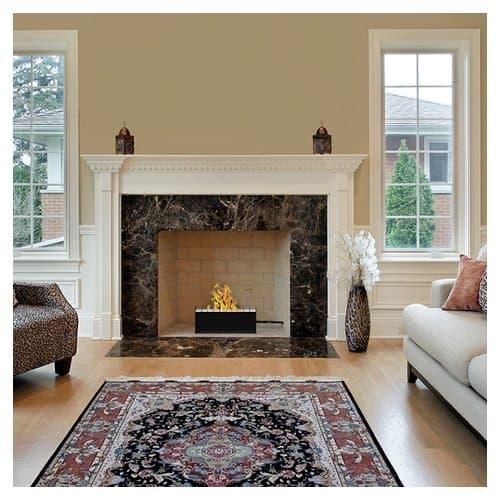 Regal Flame Pro Ventless Bio-Ethanol Fireplace Insert 2