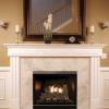 """Tahoe Clean Face Direct Vent MV Deluxe 42"""" LP Fireplace with Blower 2"""