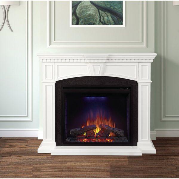 Napoleon Electric Fireplace 1